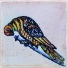 Anoniem  -  Spijkertegel met vogel. - Postcard -  A7864-1