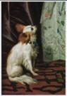 Tibout Regters (1710-1768)  -  Portret van een Dame (detail) - Postcard -  A8220-1