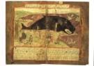Adriaen Coenen (1514-1587)  -  Vis booc - Postcard -  A8247-1