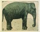 S.Jessurun de Mesquita(1868-19 -  Olifant, 1916 - Postcard -  A8491-1