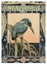Theo van Hoytema 1863-1917  -  IJsvogel, kalen - Postcard -  A9089-1