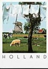 Igno Cuypers  -  Washline, Holland - Postcard -  AU0795-1