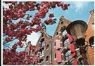 Igno Cuypers  -  Springtime on the Brouwersgracht, Amsterdam - Postcard -  AU1009-1