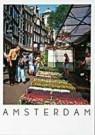 David Warren  -  Flower Market on the Singel, Amsterdam - Postcard -  AU1033-1