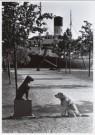 Rolf Adlercreutz  -  Dog meets dog - Postcard -  B0182-1