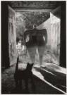 Anoniem  -  Niki de Saint Phalle, 1967 - Postcard -  B1764-1