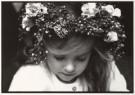 Alexandra Stonehill  -  Mille fleurs. - Postcard -  B1778-1