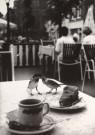 Cor de Kock (1946)  -  Huismussen eten appelgebak op terras - Postcard -  B1860-1