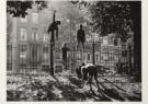 Sem Presser (1917-1986)  -  Kastanjes rapen, Sarphatipark, Amsterdam - Postcard -  B1900-1