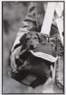 Buschman Velbert  -  Dog in a bag - Postcard -  B2546-1