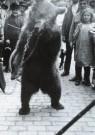 A. Bijnen (1870-1938)  -  Zigeuner met beer in de Ginnekenstraat, Breda, jul - Postcard -  B2851-1