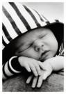Dave Anderson (1970)  -  Sleeping on Mums Shoulder - Postcard -  B3017-1