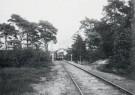 A.J.Bonda (1872-1928)  -  Halte Sparrenlaan, Bergen (NH), stroomtram - Postcard -  B3509-1
