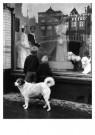 Ad Windig (1912-1996)  -  Mient, kledingmagazijn Petro, Alkmaar - Postcard -  B3705-1