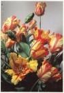 Paul Huf (1924-2002)  -  Flowerpower no. 3 - Postcard -  C0779-1
