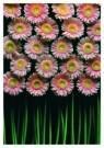 Paul Huf (1924-2002)  -  Flowerpower no. 9 - Postcard -  C0785-1