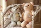 Coquille  -  My bears - Postcard -  C10341-1