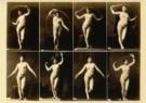 Calavas Freres  -  Studie van vrouw in 8 poses - Postcard -  C10404-1