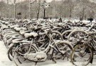Rob van Kleef  -  R v Kleef/Wintertime/ABO30 - Postcard -  C11262-1