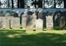 Donald Janssen (1943)  -  Joodse begraafplaats - Postcard -  C11461-1