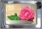 Rolf Unger  -  The Flower (Roses) automatiek - Postcard -  C11688-1