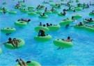 Alan Burles (1957)  -  Waterpark, 2003 - Postcard -  C11802-1