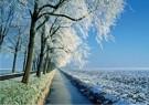 Jaap Hart  -  Winter in Holland - Postcard -  C11811-1