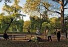 Ronald Arthur van Schaik (1956 -  Central Park, 2009 - Postcard -  C12061-1