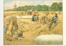 Cornelis Jetses (1873-1955)  -  Het volle leven: 'Een julidag op het land' - Postcard -  C3660-1