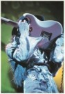 Elliott Landy (1942)  -  Jimi Hendrix, Fillmore East, NYC, 1968 - Postcard -  C4463-1