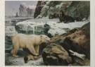 M.A. Koekkoek (1873-1944)  -  M.A.Koekkoek/Temidden van snee - Postcard -  C4493-1