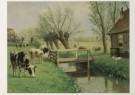 M.A. Koekkoek (1873-1944)  -  Herkauwers - Postcard -  C4766-1