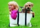 Howard Walker  -  Bags of trouble - Postcard -  C5318-1