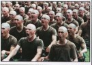 J.Torgovnik (1969)  -  J.Torgovnik/Marines boot camp - Postcard -  C7100-1