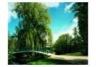 Mathijs Schrofer  -  Untitled - Postcard -  C7296-1