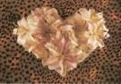 Mirja de Vries  -  Flowerhearts VI - Postcard -  C7386-1