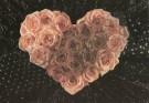 Mirja de Vries  -  Flowerhearts VIII - Postcard -  C7388-1