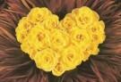 Mirja de Vries  -  Flowerhearts X - Postcard -  C7390-1