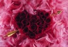 Mirja de Vries  -  From the series 'Flowerhearts' No. 12 - Postcard -  C7392-1