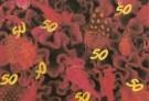 Mirja de Vries  -  Floral Tribute 50 - Postcard -  C7436-1
