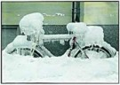 Hans Kahr  -  Icecycle - Postcard -  C8098-1