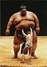 Raymond Kennedy  -  R.Kennedy/Sumo Wrestler/WPP. - Postcard -  C8587-1