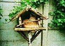 J.Nijkamp  -  Kat in vogelhuisje - Postcard -  C8594-1