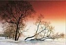 Paul van Gaalen(1948)  -  bevroren uiterwaa - Postcard -  C9245-1