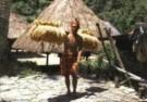 Frans Welman  -  Ifugao, bringing hom - Postcard -  C9371-1