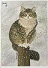 Francien van Westering (1951)  -  Max in sneeuw - Postcard -  D0836-1