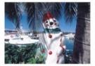 Thomas Haltner  -  Christmas on Bahamas - Postcard -  D0928-1