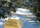 Francis Lake  -  Welke kant zullen we op?, 2004 - Postcard -  D0933-1