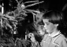 Spaarnestad Fotoarchief,  -  Kindern steken kaarsjes in de kerstboom, 1964 - Postcard -  D1168-1