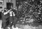 Spaarnestad Fotoarchief,  -  Weeskinderen, bij een grote kerstboom in weeshuis - Postcard -  D1170-1